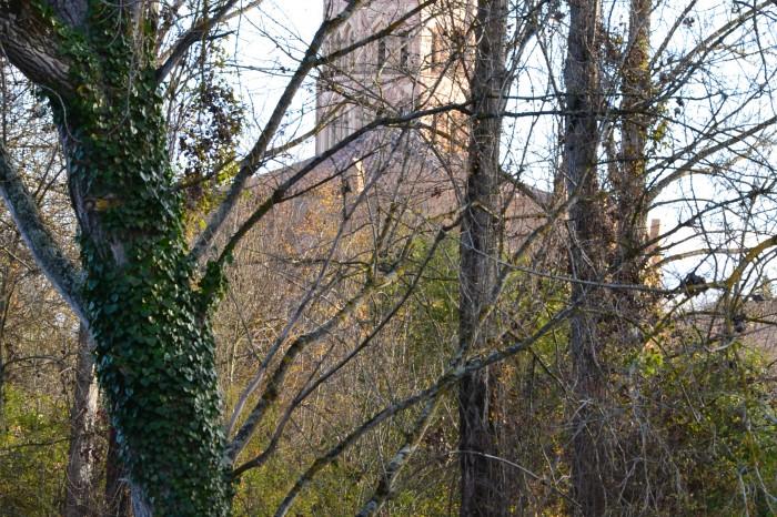 Cathédrale Sainte-Marie de Lombez - Cathédrale Sainte-Marie de Lombez
